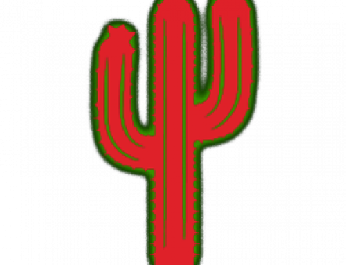 Social Media Project : Red Cactus